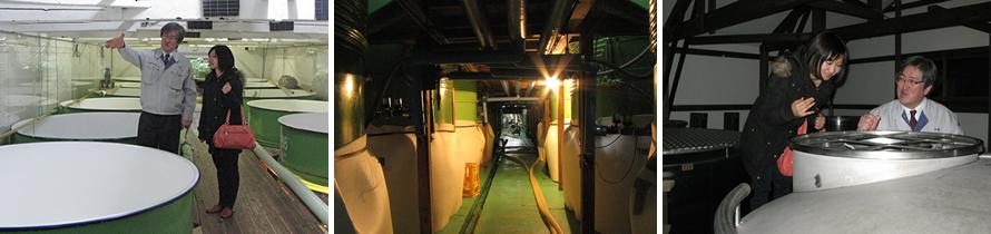 発酵タンクとその下部・上槽