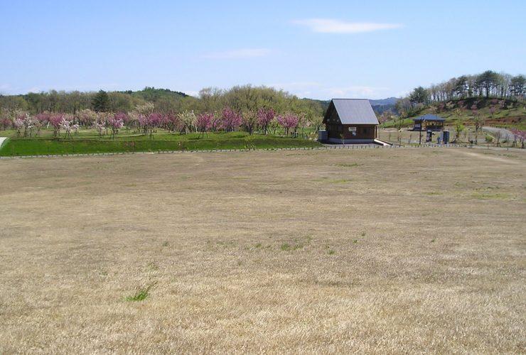 黄桜カップパークゴルフ